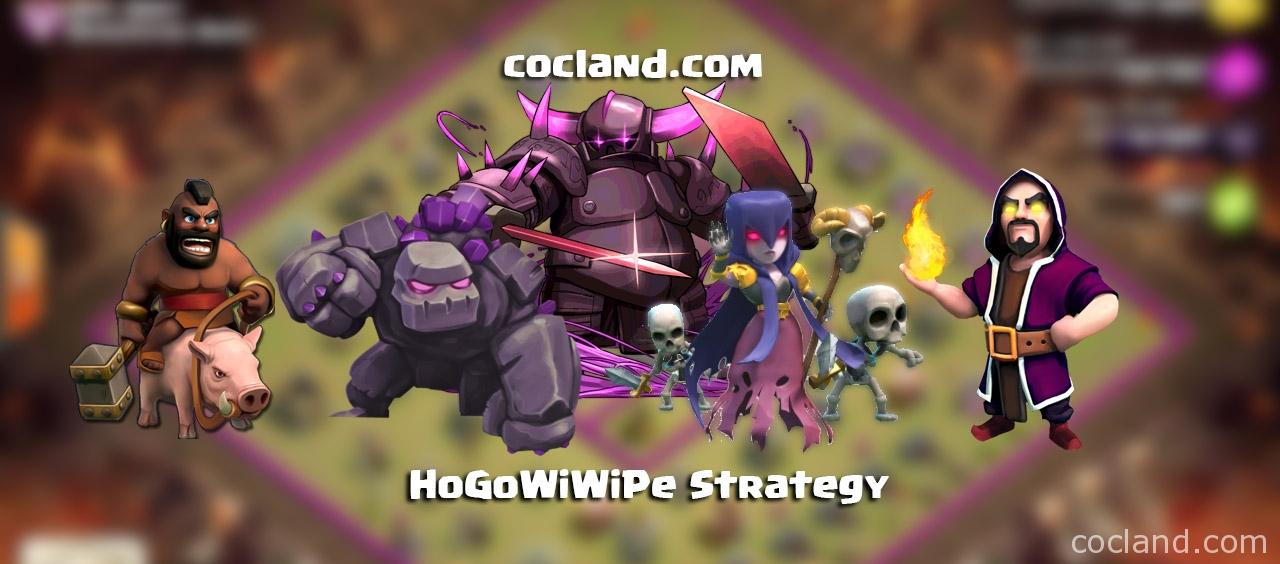 hogowiwipe-strategy