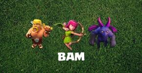B.A.M Farmng Strategy