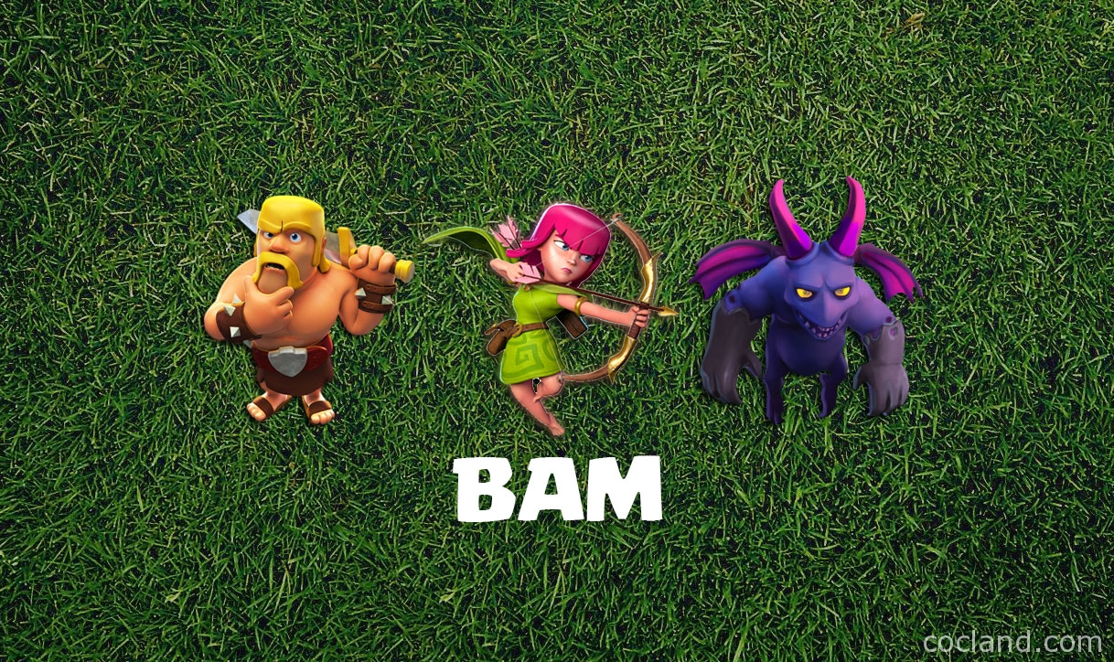 B.A.M Farmng Strategy