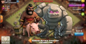gohogs-attack-strategy