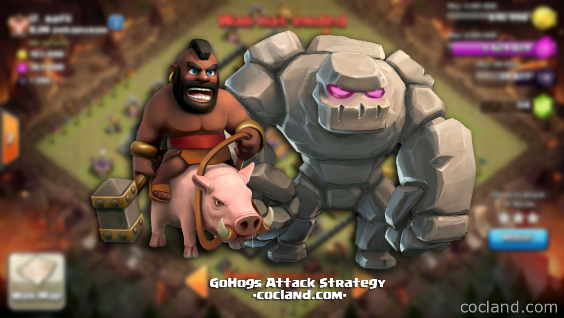 GoHogs Attack Strategy