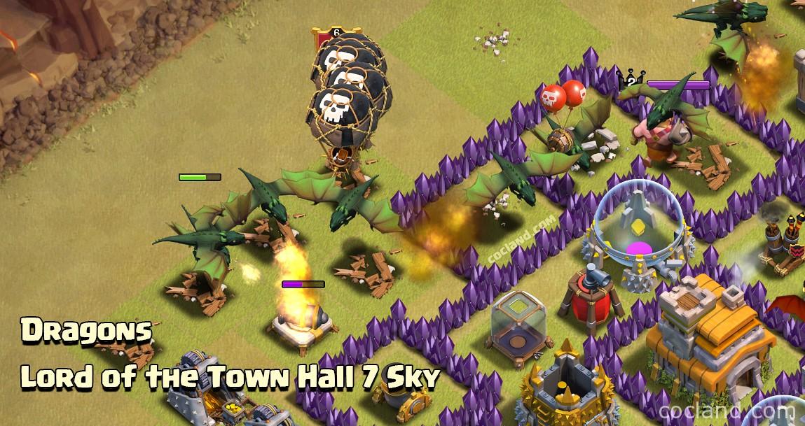 Dragons at Town Hall 7