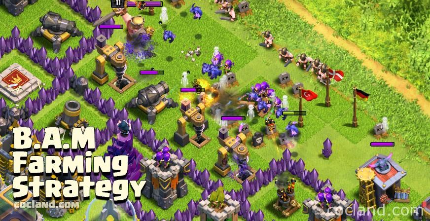 bam-farming-de-strategy